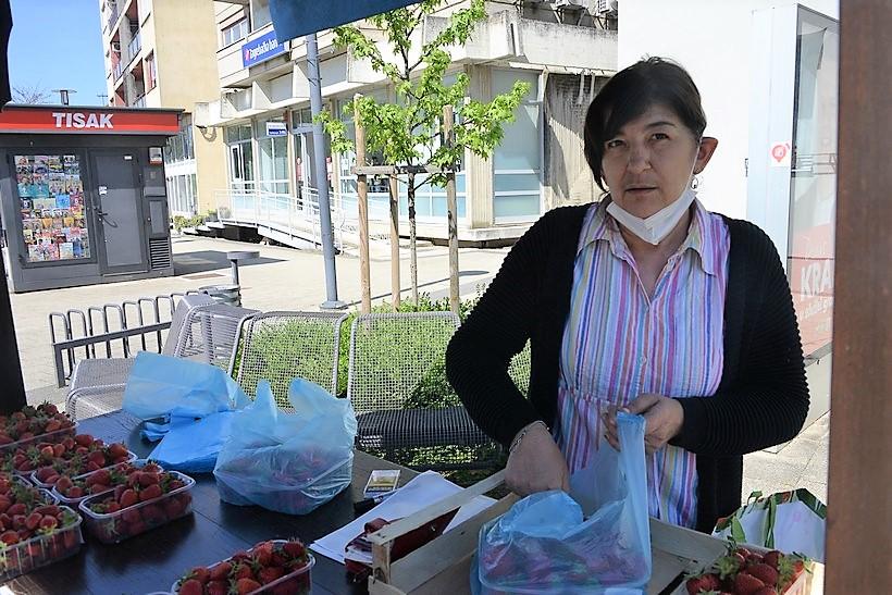 Prve jagode u Vrbovcu