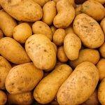 Krumpiru prijete klimatske promjene: 'Toj biljci osobito smetaju visoketemperaturenoću'