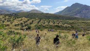 Počela Boranka: Najveća volonterska akcija pošumljavanja požarišta u Europi