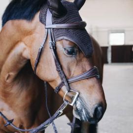 Kentucky Horsewear Fly Veil Wellington Leather Black