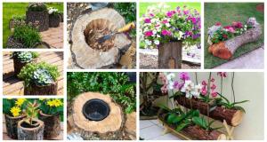 Inspirace na květináč jen z obyčejného polínka nebo kořenu – inspirujte se