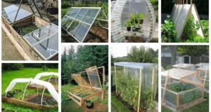 Inspirace na levné zahradní skleníky
