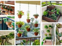 Úžasné nápady na pěstování na balkoně