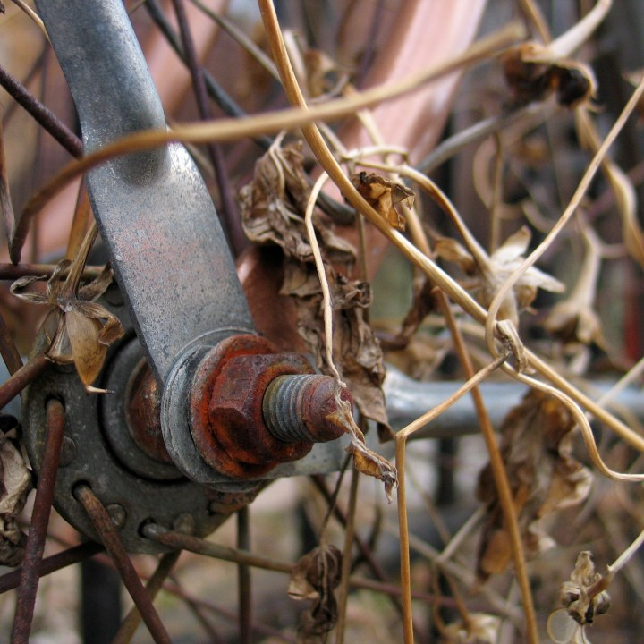 Close up of the axel on a vintage bike, covered in dead foliage
