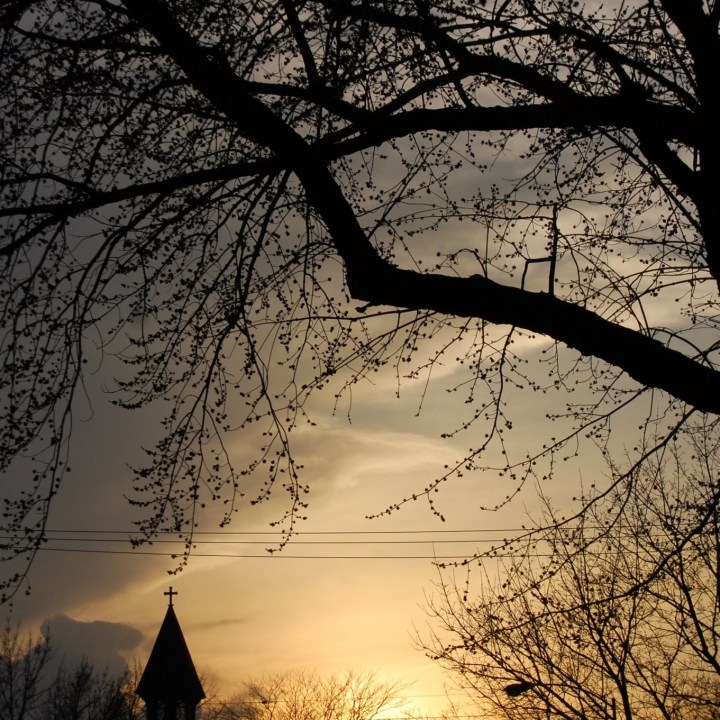 church steeple Sunset with overhanging trees