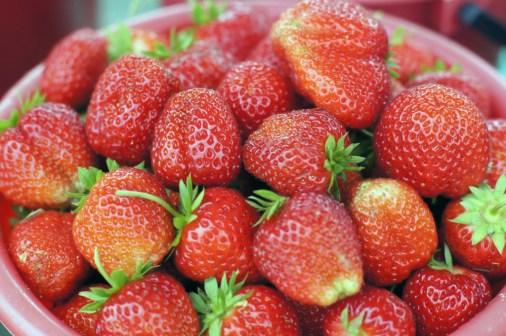 Королевская ягода, Фото с места события собственное