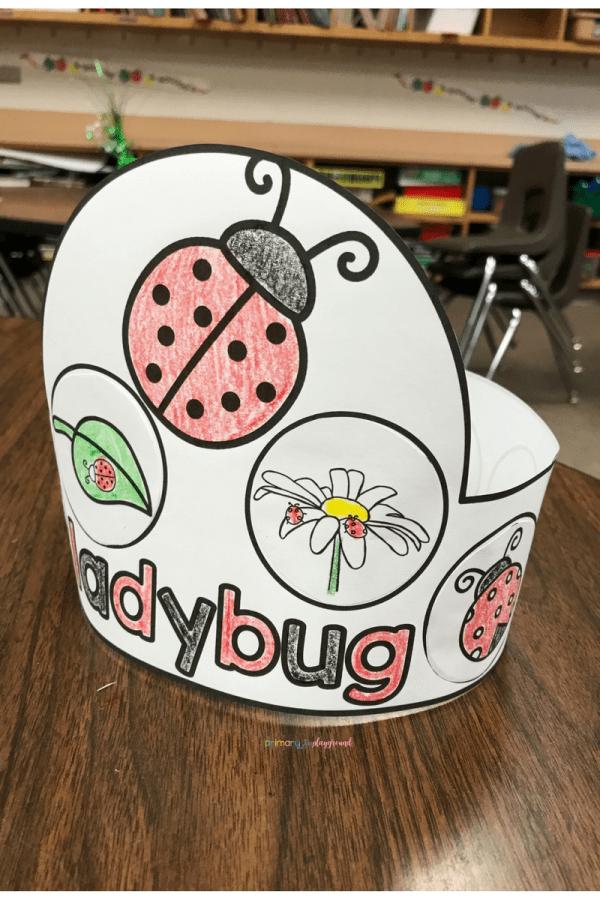 Ladybug lifecycle hat