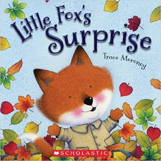 Little Fox's Surprise