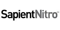 logos_0006_Sapient Nitro