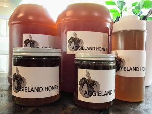 aggieland honey group