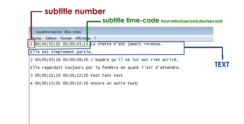 document subtitle example