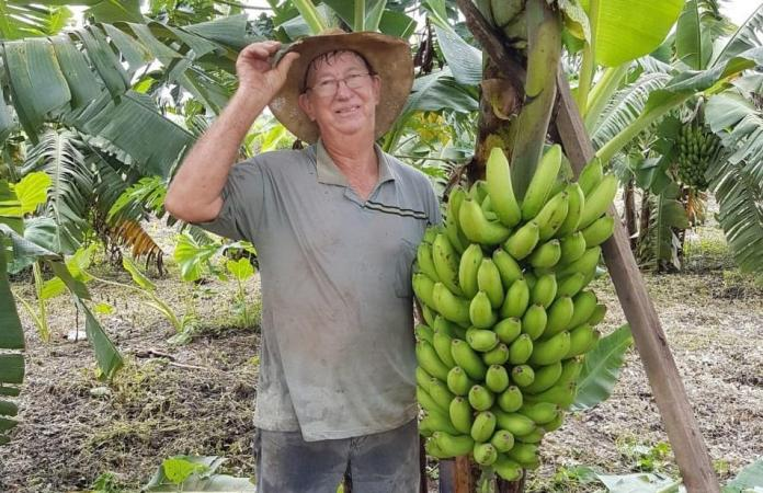 Produtor investe no cultivo de frutas orgânicas no município de Cláudia