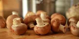 Mulher morre após comer cogumelos em restaurante
