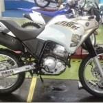 Yamaha Teneré 250 com nova traseira é flagrada