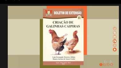 Photo of PROGRAMA GLOBO RURAL DIVULGA BOLETIM DE EXTENSÃO DA UFV