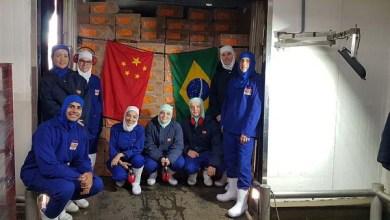 Photo of Pif Paf realiza primeiro embarque de frangos para a China