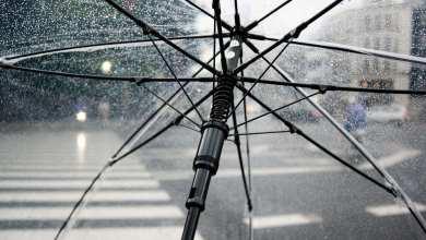 Photo of Minas Gerais registra mês de janeiro mais chuvoso dos últimos 10 anos