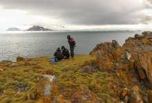 Photo of Pesquisadores da UFV detectam temperatura recorde na Antártica
