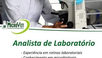 Photo of Microvet divulga vaga de emprego