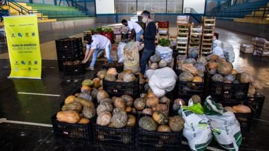 Photo of Fundação Banco do Brasil e CTA-ZM distribuem 21 toneladas de alimentos agroecológicos em Viçosa (MG)
