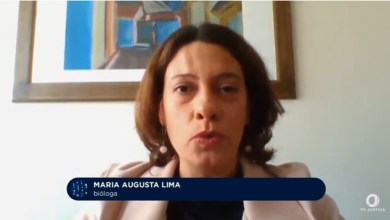 Foto de Professora da UFV participa de programa sobre biodiversidade na TV Justiça