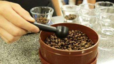 Foto de Senar divulga curso de Classificação e Degustação de Café em Ervália