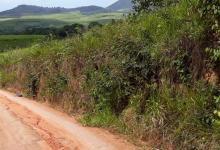 Foto de Sítio é furtado na zona rural de Viçosa