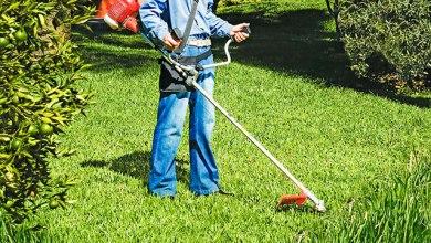 Foto de Senar realiza curso de Roçadeira em Araponga