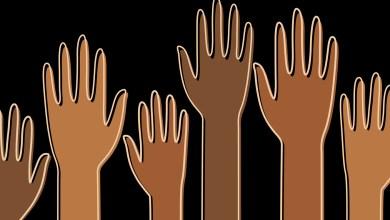 Foto de Projeto de Lei sobre cotas raciais em cargos públicos em Viçosa é aprovado em 1ª votação