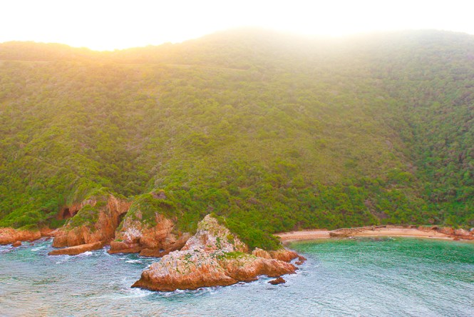 Knysna Natureza - Garden Route - South Africa