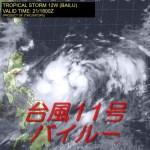 台風11号(2019)の進路予想は?名前がバイルーの意味は何?