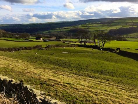 High Bradfield countryside