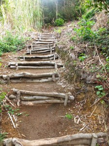 steps climbing Monte da Guia