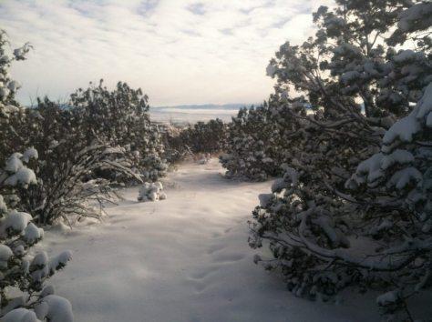 WinterHikingSouthernRockies - z04IMG_3015.jpg