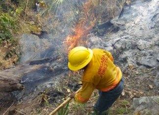 Aún hay 6 incendios forestales activos en Oaxaca