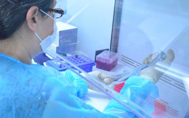 Confirman 83 nuevos casos de coronavirus en Tamaulipas