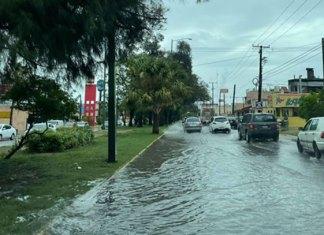 Seguirán lluvias en Victoria