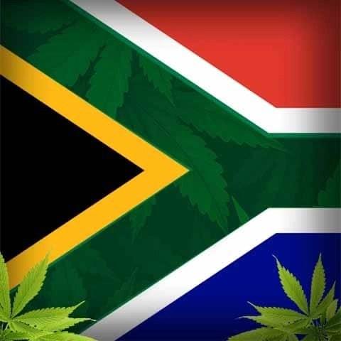 Legalizzazione della cannabis in Sudafrica