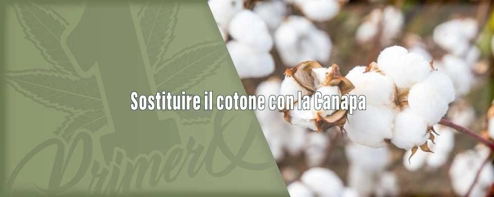 sostituire-il-cotone-con-la-canapa-1