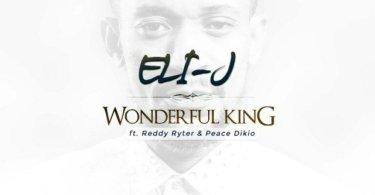Download Music: WonderFul King Mp3 By ELI-J