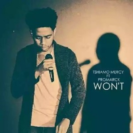 Download Music:  Won't Mp3 By Tshiamo Mercy Ft Promarck