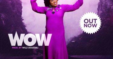 Download Music W.O.W Mp3 By Toluwanimee