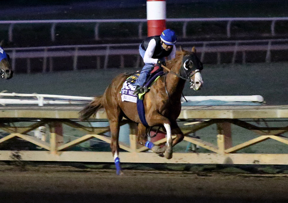 2020 Breeders' Cup Horse Racing