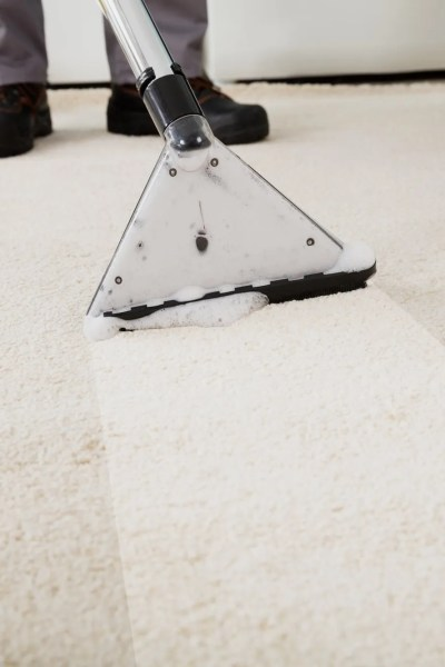 Have You Scheduled a Carpet Cleaning Service? This is How to Prep Your House for the Visit