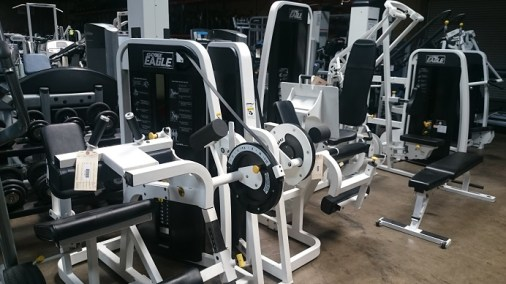 Cybex Eagle Strength Equipment