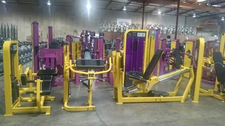 Life Fitness Pro 2 Strength Line
