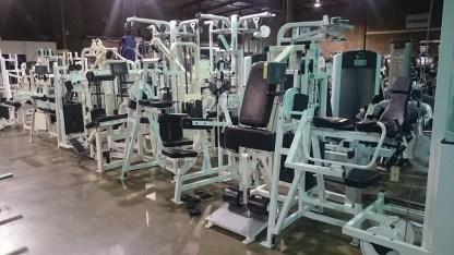Life Fitness Pro 2 (White)