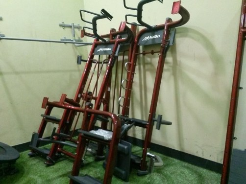 Life Fitness Synergy 360 4