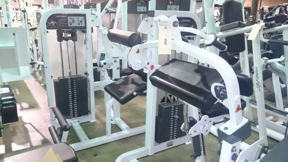 Life Fitness Pro 2 4