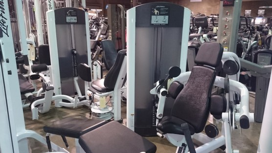 Life Fitness Signature Series 5